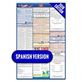 2018 Georgia (Spanish) Labor Law Poster – State, Federal, OSHA Compliant – Laminated Mandatory All in One Poster