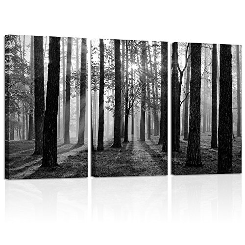 Visual Art Decor Black and White Nature Forest Landscape Picture Art Prints on Canvas Framed and Stretched Canvas Art Home Decor Living Room Wall Art (Foggy Forest Large)