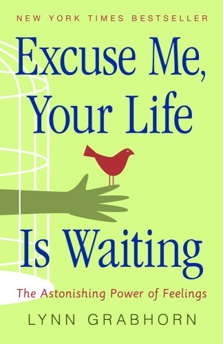 Excuse Me, Your Life is Waiting: The Astonishing Power of Feelings