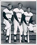Willie Mays Orlando Cepeda & Willie Mccovey 8 x 10 photo San Francisco Giants - Mint Condition