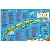 Roatan Honduras Dive Map & Reef Creatures Guide Franko Maps Laminated Fish Card