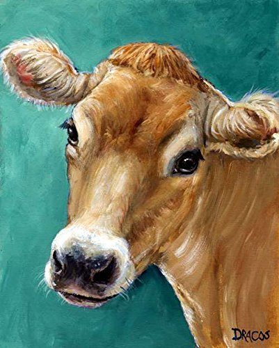 Jersey Cow Art Print, honey colored Jersey cow on teal background, dairy cow, Print of Original Painting by Dottie Dracos (Jersey Dairy Cows)