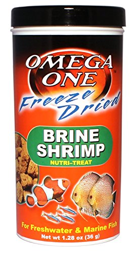The 10 best freeze dried shrimp fish food for 2020