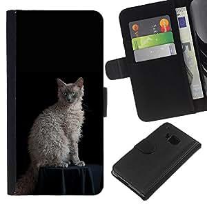 KLONGSHOP // Tirón de la caja Cartera de cuero con ranuras para tarjetas - Laperm Gato Rizado Ojos azules del gato - HTC One M7 //