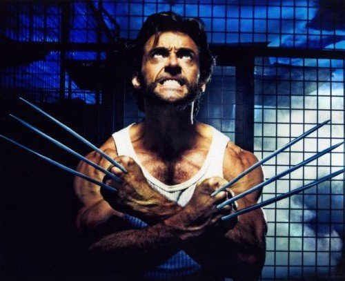 Hugh Jackman Poster Wolverine #01B Master Print