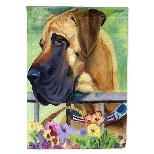 - Caroline's Treasures 7311GF Great Dane Natural Ears Fawn in Flowers Flag, Small, Multicolor