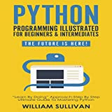 Python Programming Illustrated for Beginners