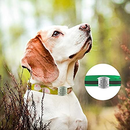 HOUSWEETY Custom Engraved Stainless Steel Pet ID Tag Unisex Slide-on Tag 35mmx15mm HOUSWEETYKLB108094
