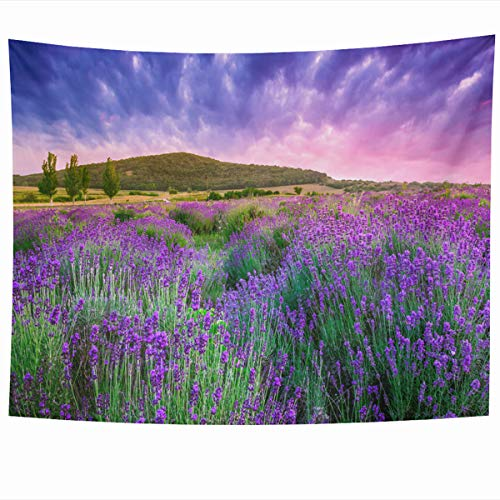 Ahawoso Tapestry Wall Hanging 60x50 Inches Field Purple Provence Sunset Over Summer Lavender Tihany Nature Green France Hungary Harvest Home Decor Tapestries Art for Living Room Bedroom Dorm