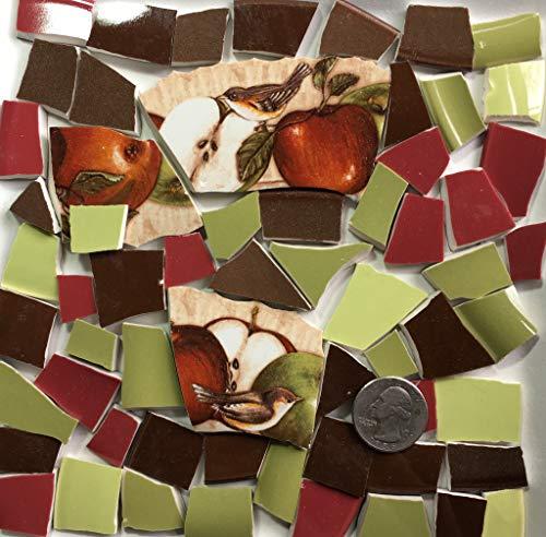 Mosaic Art & Craft Supply ~ Apples & Birds w/Red Green & Brown Tiles (B118)