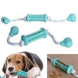 Pet Dog Puppy Cat Rubber Dental Teeth Chew Bone Food Feeder Dispenser Play Toy