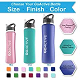 GO Active Insulated Water Bottle with Straw. Stainless Steel Double Wall Sport bottle featuring ActiveLock thermal vacuum keeps ice over 24 hours! Durable, Portable (Pink Ice, 18 oz)