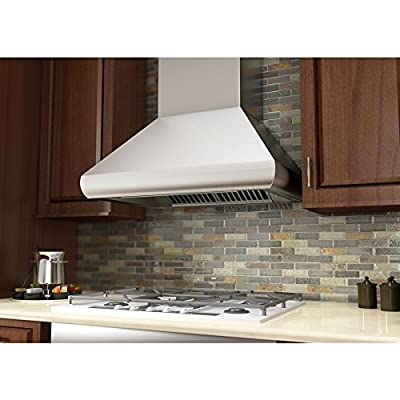 "1200 CFM Ducted Wall Mounted Range Hood Size: 18"" H x 42"" W x 24"" D"