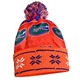 NCAA Florida Gators Busy Block Printed Light Up Beanie, One Size, Blue