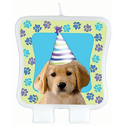 Amazoncom Party Pups Birthday Candle Toys Games