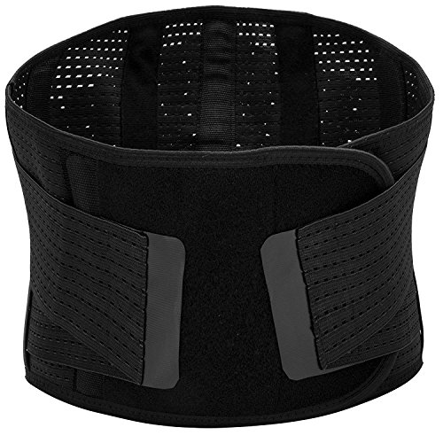 - Lumbar Support Brace Breathable Mesh Five Steels Plate Protection Back Waist Support Belt for Man and Woman(Plus Size) (XL)