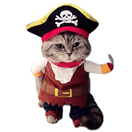 Alfie Pet by Petoga Couture - Kade the Pirate for Party Halloween Special Events Costume - Size: - Halloween Pet Pirate Costume