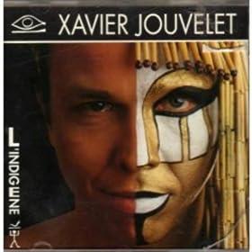 Xavier Jouvelet - Blue Congo