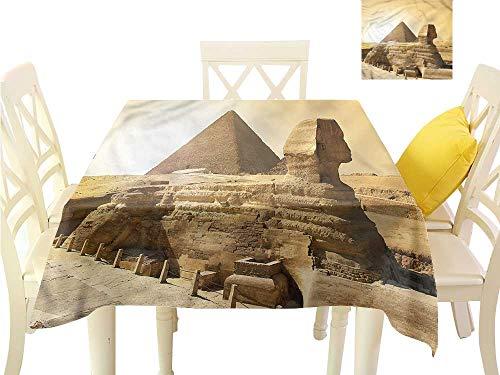 (Davishouse Washable Table Cloth Egptian Pyramids Indoor Outdoor Camping Picnic W63 x L63)