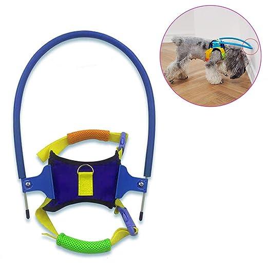 Anillo anti-colisión para mascotas ciegas, arnés para perros ...