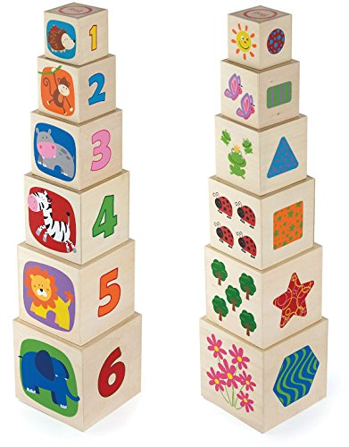 Viga NCT Natural Nesting and Stacking Blocks by Viga