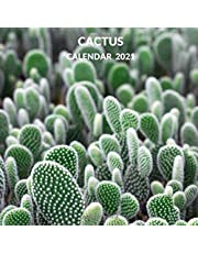 Cactus Calendar 2021: January 2021 - December 2021 Square Cacti Photo Book Monthly Planner Calendar Present | Cactus Gift Idea For Men & Women