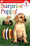 img - for Surprise Puppy (DK Reader - Level 1) by Judith Hodge (1998-11-06) book / textbook / text book