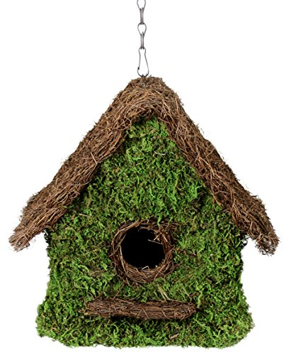 (SuperMoss (56012) Maison Birdhouse with Chain, 11 by 12-Inch, Fresh Green)