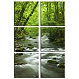 Forest stream print on canvas, framed and ready to hang , tropical forest canvas print, stream canvas print, 6 panel print , rainforest wall art, modern home and office interior décor