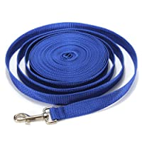 Pet Leashes Product