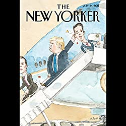 The New Yorker, July 24th 2017 (Danielle Allen, Nathan Heller, and Hua Hsu)