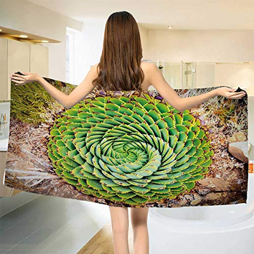 Chaneyhouse Plant,Bath Towel,National Flower of Lesotho South of Africa Aloe Polyphylla Spinning Spiral Aloe Vera,Bathroom Towels,Multicolor Size: W 27.5'' x L 55'' by Chaneyhouse