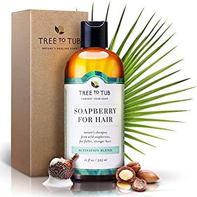 Real, Organic Thickening Shampoo. The Only pH 5.5 Balanced Biotin Shampoo For Sensitive Skin – DHT Blocker Shampoo For Women And Men. Volumizing Shampoo With Fresh Eco-Friendly Wild Soapberries