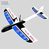 "YKL WORLD 2PCS Glider Airplane 11.6"" Wingspan Super Capacitor Electric Coreless Hand Throwing Free-flying Airplane DIY Plane Model Educational Toy for Kids"