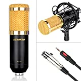 Aokeo AK-80 Professional Studio Broadcasting & Computer Recording Microphone for PC Laptop Skype MSN YouTube Microphone (Black)