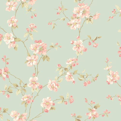 Apple Blossom Wallpaper - 7