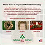 National Tree Company lit Artificial Christmas
