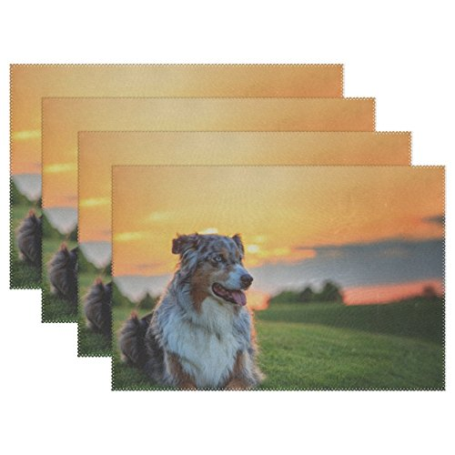 RH Studio Plate Pad Australian Shepherd Dog Aussie Dog Grass Sunset Heat-Resistant Table Placemats Set of 4 Stain Resistant Table Mats Washable Eat Mat Home Dinner Decorative