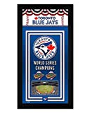 Toronto Blue Jays Miniframe World Series Championship Banner 7x13 Framed Sports Photo