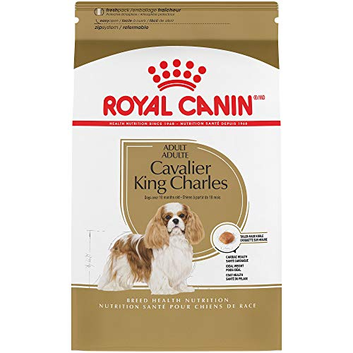 - Royal Canin Breed Health Nutrition Cavalier King Charles Adult Dry Dog Food, 3-Pound