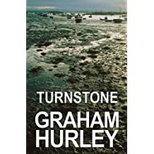 Turnstone (The Faraday and Winter Series Book 1)
