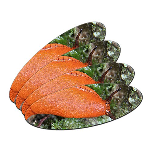 large-orange-slug-snail-mollusk-double-sided-oval-nail-file-emery-board-4-pack