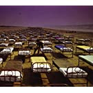 Momentary Lapse Of Reason