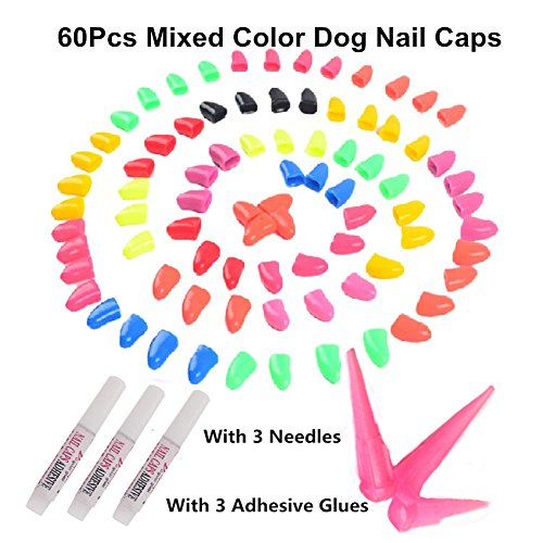 60pcs/lot Colorful Soft Pet Dog Paw Pet Nail Caps Control Nail Caps Cover Size With Adhesive Glue (M)