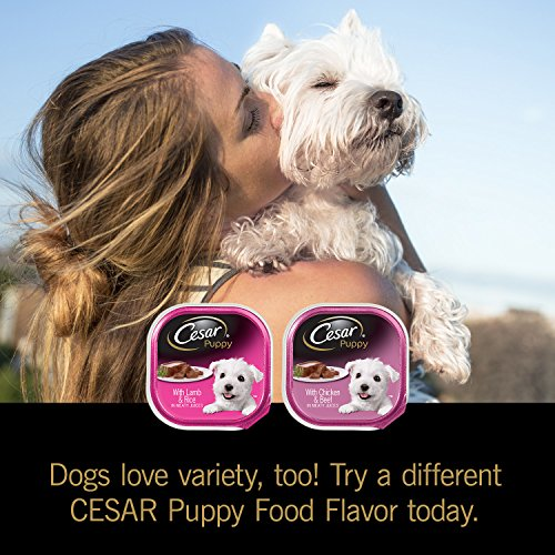 Pictures of Cesar Canine Cuisine Puppy Wet Dog Food 10114259 5
