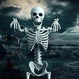 "OKPOW 16"" Halloween Posable Skeletons Realistic"