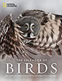 img - for The Splendor of Birds: Art and Photographs From National Geographic book / textbook / text book