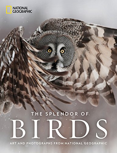An elegant collection of the best artwork and photography from the National Geographic archives depicting the magnificence of birds.Bird, nature, and art lovers alike will treasure this sumptuous visual celebration of the colors, forms, and behaviors...