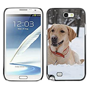 Hot Style Cell Phone PC Hard Case Cover // M00001500 Snow Pattern // Samsung Galaxy Note 2 N7100