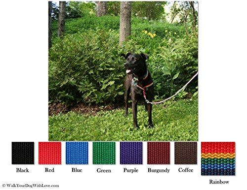 No-Choke No-Pull Front-Leading Dog Harnesses, Original Edition, 110-250 lbs, Rainbow